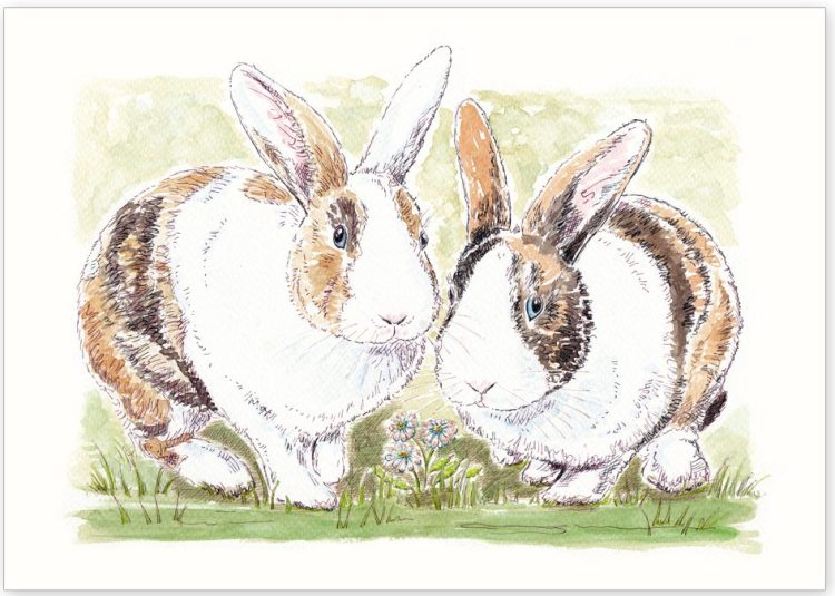 Pet Portrait of Rabbits Alfie and Ernie