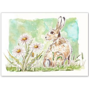 Hare and Daisies - Card and Print