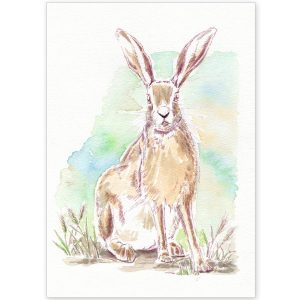 Norfolk Hare - Card and Print