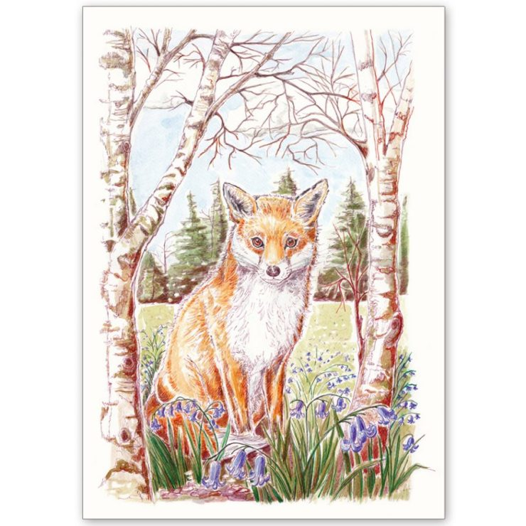 Fox and Bluebells - Card and Print