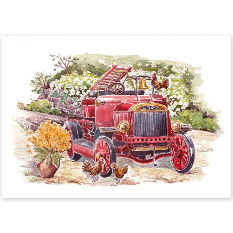Old fire engine and chickens