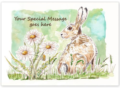 Hare with message