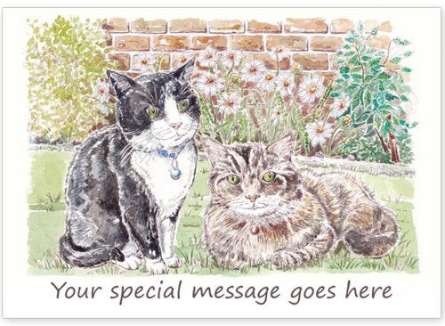 Cats with message