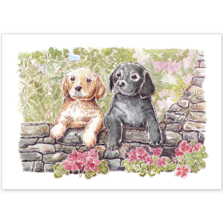 Black and Yellow Labrador Puppies - Greeting Card