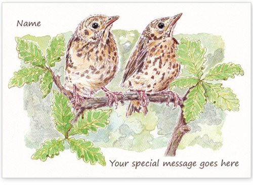 Thrushes with message