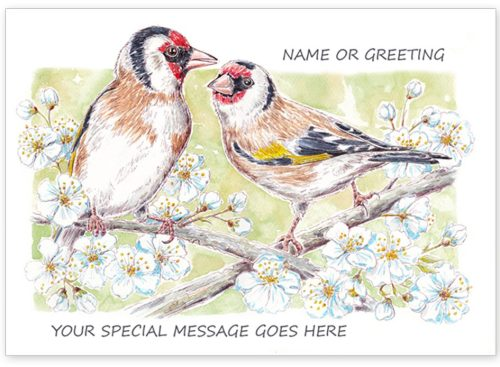 Goldfinches with message