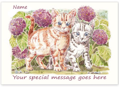Kittens with message