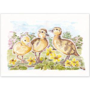 Duckling Trio - Card or Print