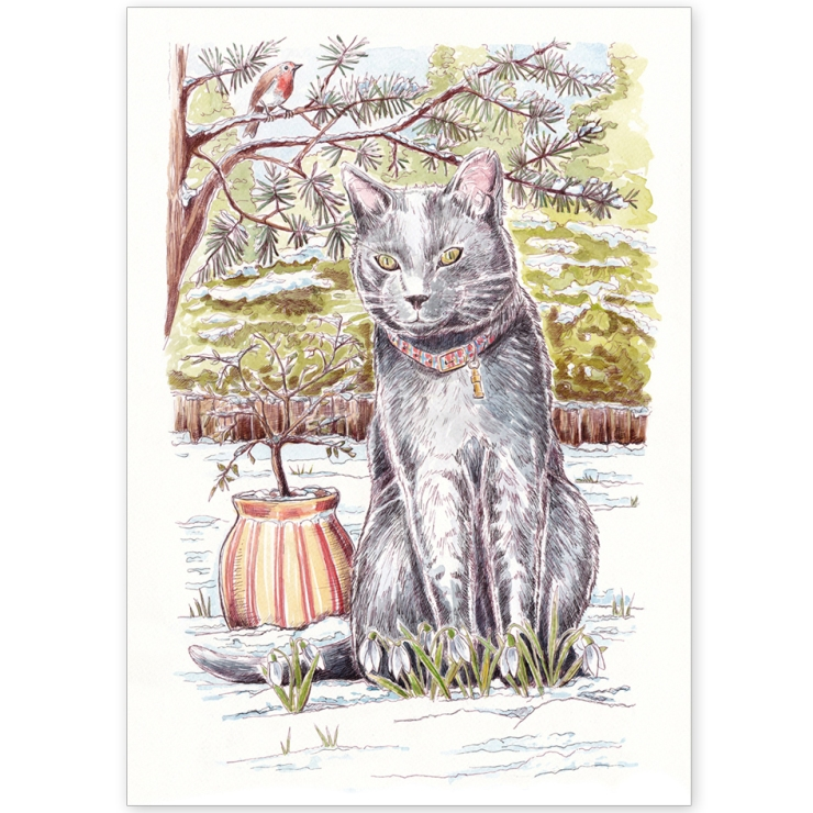 Grey Cat and Robin in Snow - Greeting Card