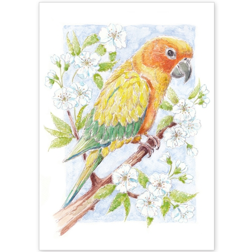 Pet Portrait -Kiki the Parrot and Apple Blossom