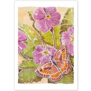 Primrose and Butterfly