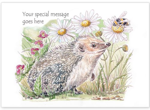 Hedgehog with message