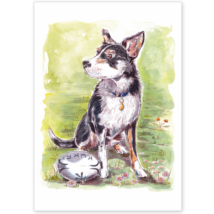 Border Collie with Rugby Ball - Greeting Card