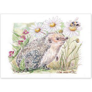 Hedgehog and Bee - Card or Print