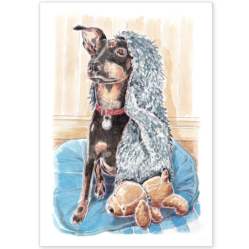 Pet Portrait - Rosco, Crossbreed, with Blanket