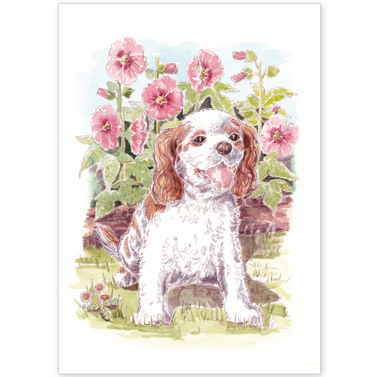 King Charles Spaniel and Hollyhocks - Greeting Card