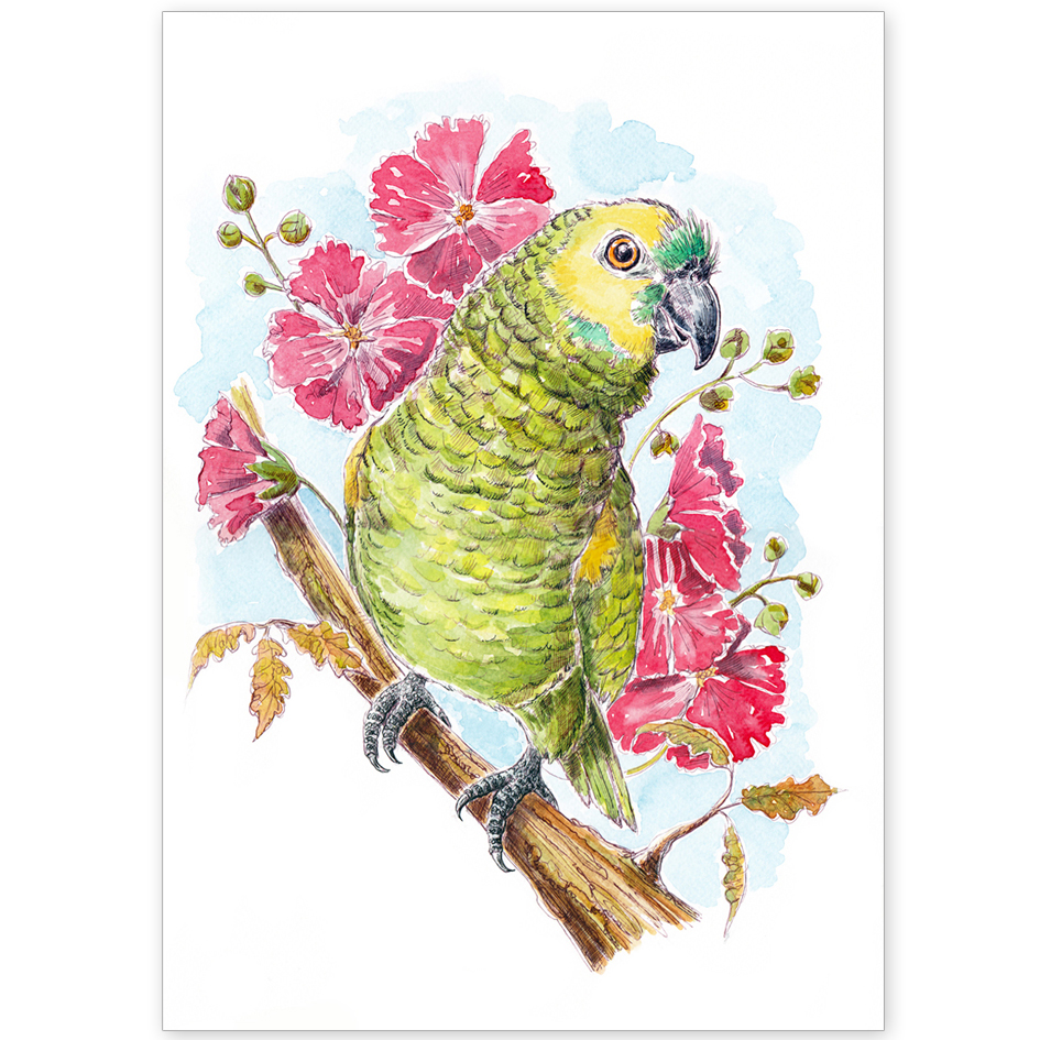Pet Portrait - Crackers the Parrot with Hibiscus Flowers