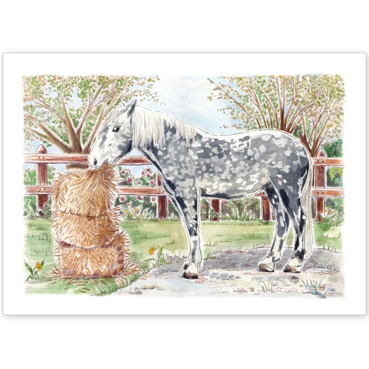 Dappled Grey Horse - Greeting Card