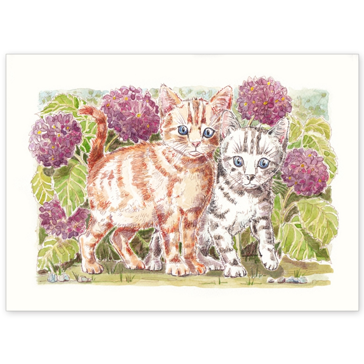 Kittens and Hydrangeas - Greeting Card